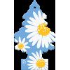 Wunderbaum luftfrisker dufttræ Daisy Chain